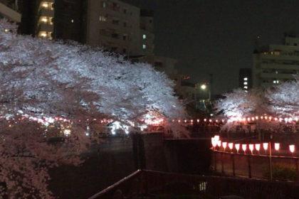 企画展「中目黒アート花見会Vol.5 Sakura展」